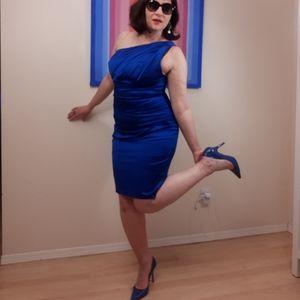 NWT Bodycon Coctail Dress